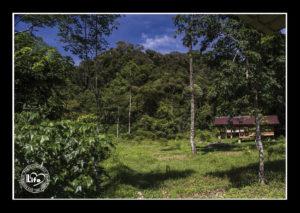 tabor_rezervace30